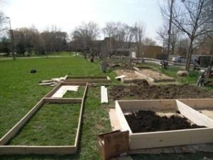 Building plot border-boxes